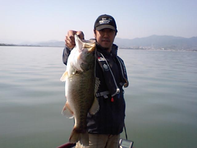 今日の釣果