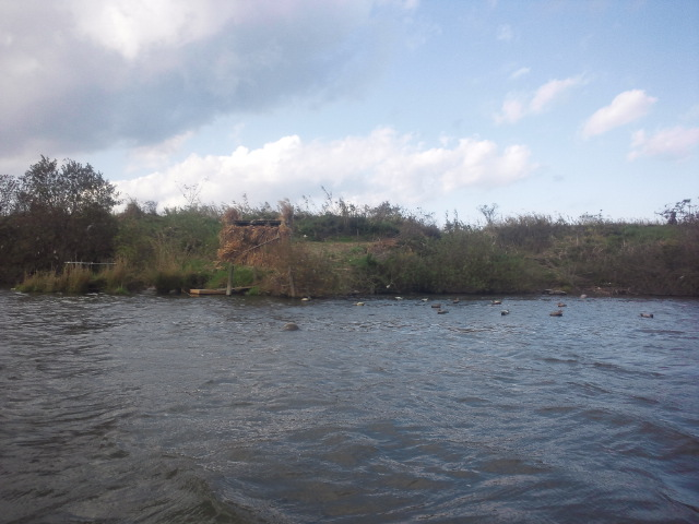 利根川再開