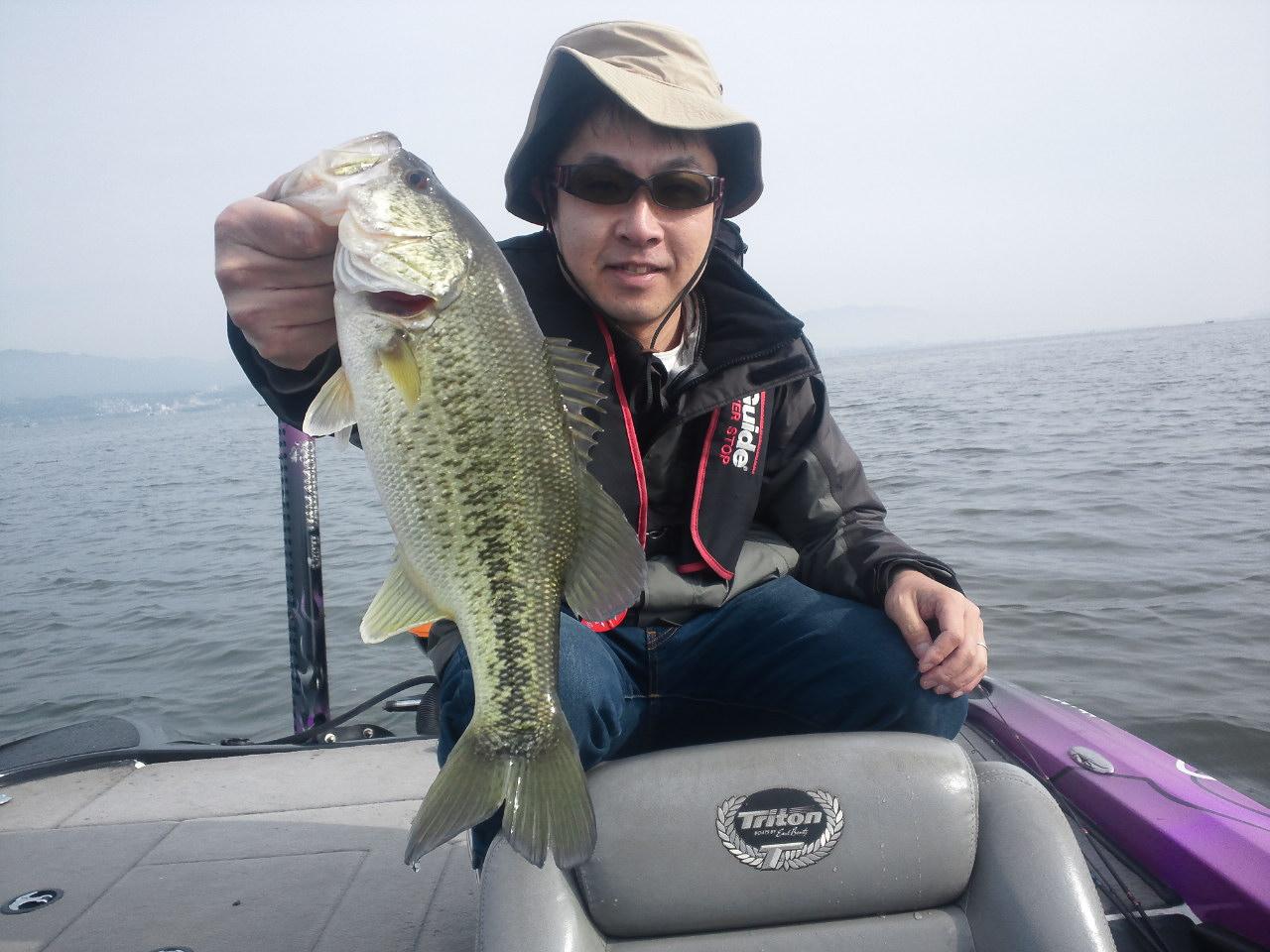 琵琶湖ガイド再開