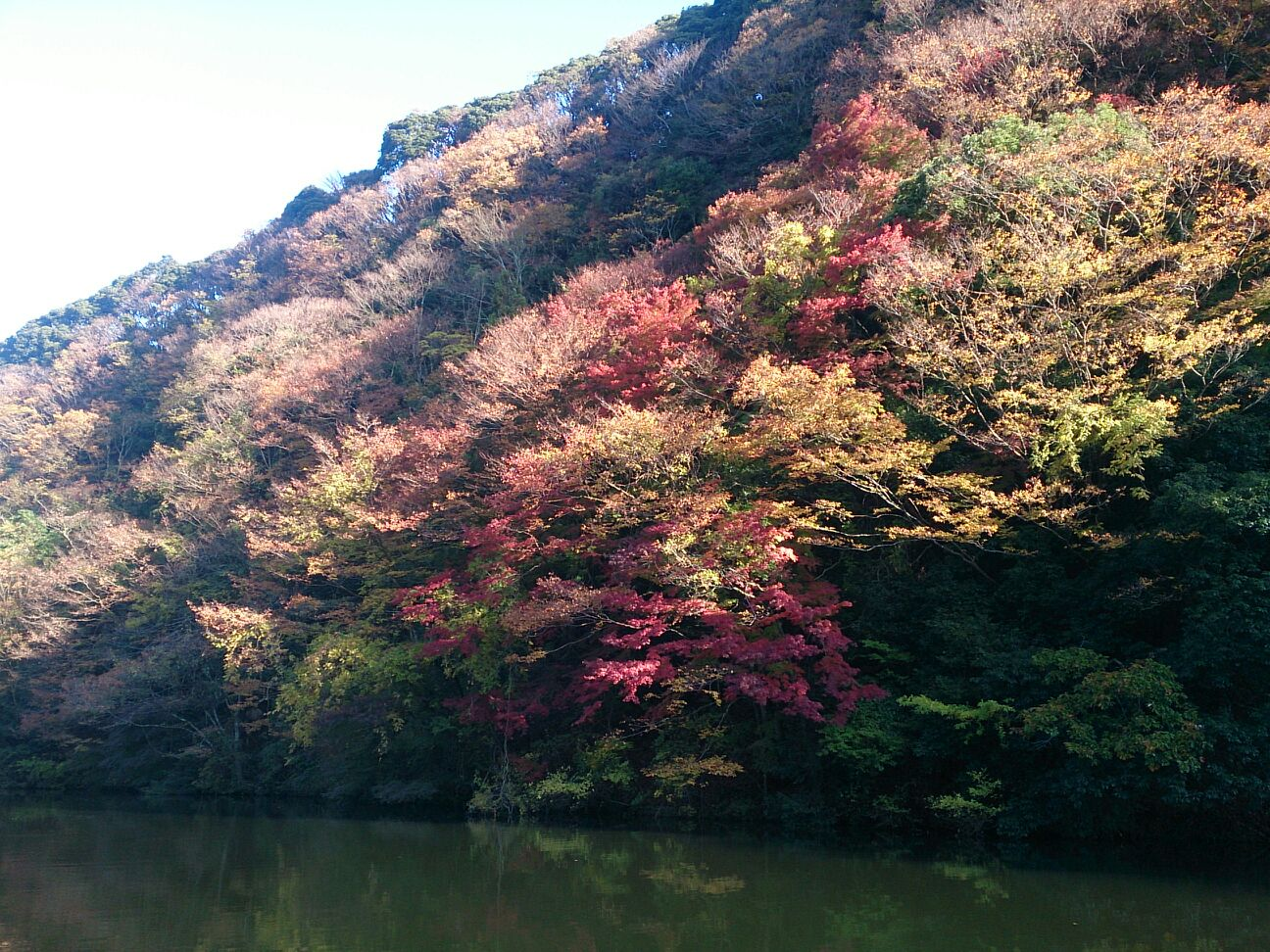 亀山ガイドスタート