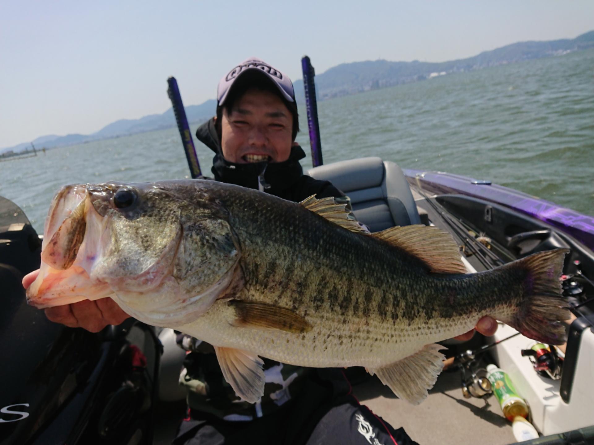 琵琶湖ガイドプラ、あわやロクマル