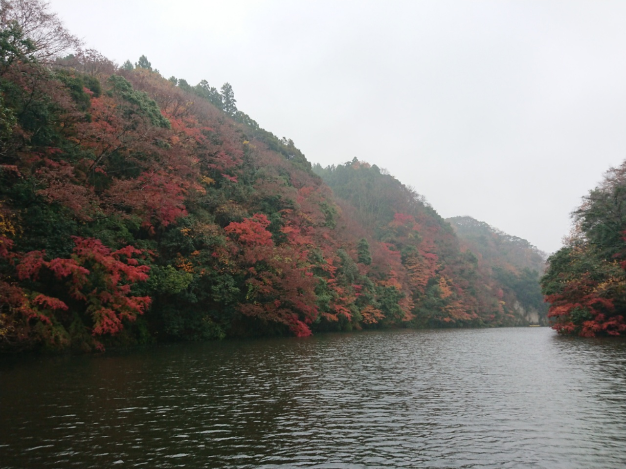 亀山ガイド再開